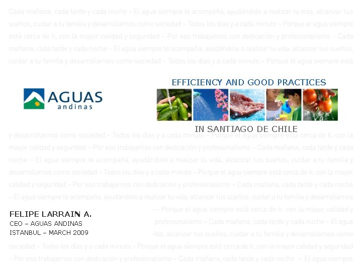 EFFICIENCY AND GOOD PRACTICES IN SANTIAGO DE CHILE FELIPE LARRAIN A. CEO – AGUAS