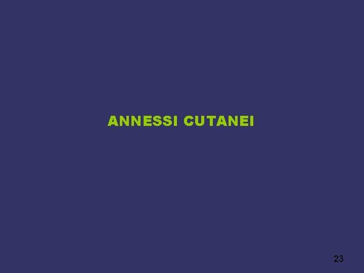ANNESSI CUTANEI 23