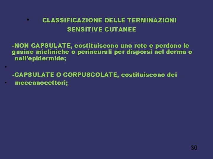 • CLASSIFICAZIONE DELLE TERMINAZIONI SENSITIVE CUTANEE -NON CAPSULATE, costituiscono una rete e perdono