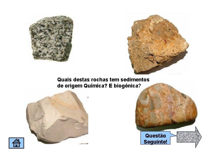 Quais destas rochas tem sedimentos de origem Química? E biogénica? Questão Seguinte!