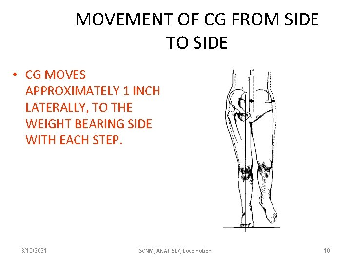 MOVEMENT OF CG FROM SIDE TO SIDE • CG MOVES APPROXIMATELY 1 INCH LATERALLY,