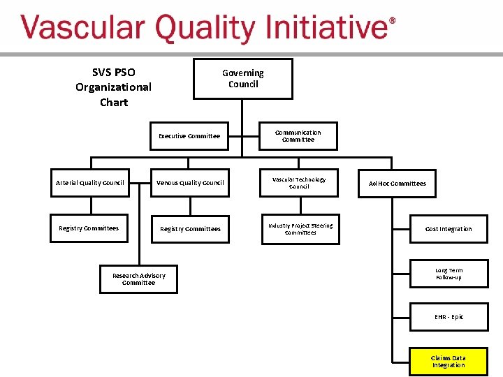 SVS PSO Organizational Chart Governing Council Executive Committee Communication Committee Arterial Quality Council Venous
