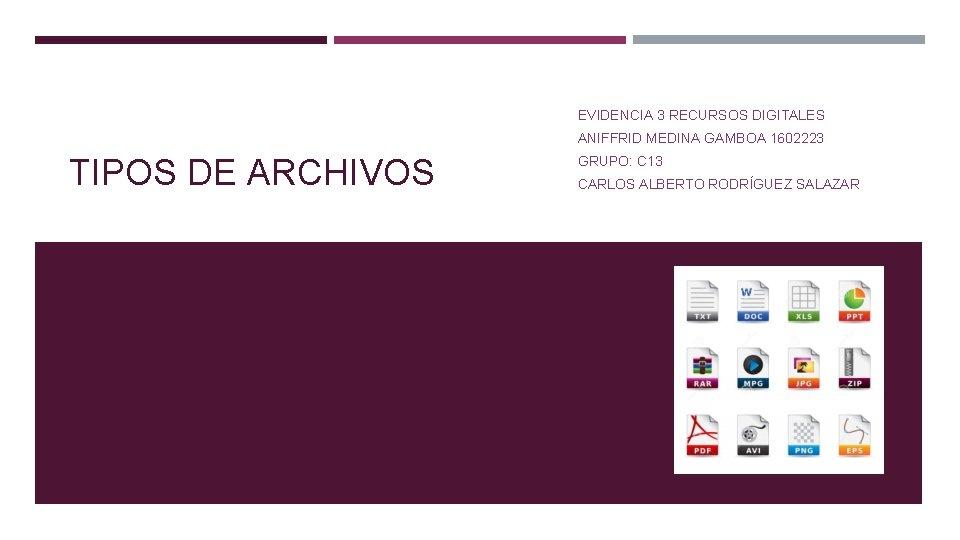 EVIDENCIA 3 RECURSOS DIGITALES ANIFFRID MEDINA GAMBOA 1602223 TIPOS DE ARCHIVOS GRUPO: C 13