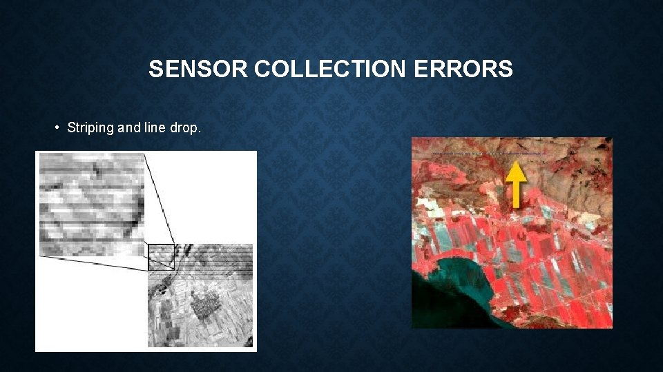 SENSOR COLLECTION ERRORS • Striping and line drop.