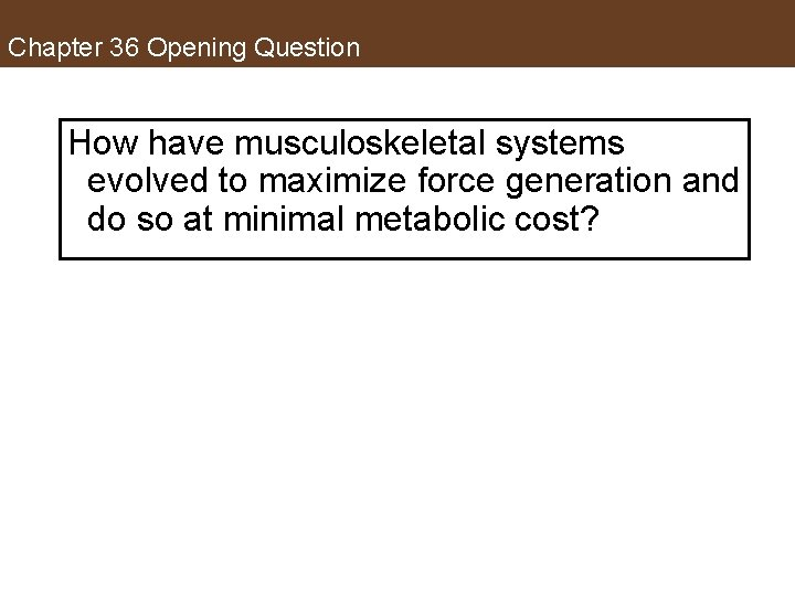 Chapter 36 Opening Question How have musculoskeletal systems evolved to maximize force generation and