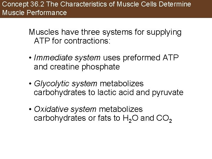 Concept 36. 2 The Characteristics of Muscle Cells Determine Muscle Performance Muscles have three