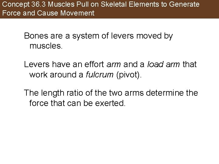 Concept 36. 3 Muscles Pull on Skeletal Elements to Generate Force and Cause Movement