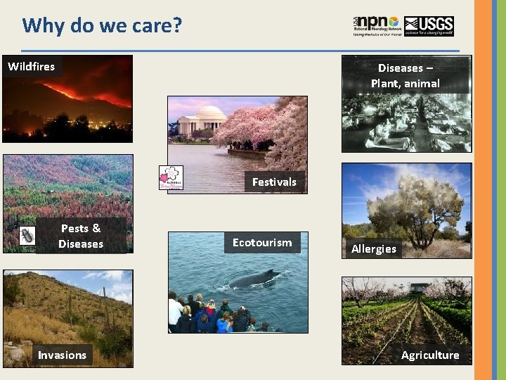 Why do we care? Wildfires Diseases – Plant, animal Festivals Pests & Diseases Invasions