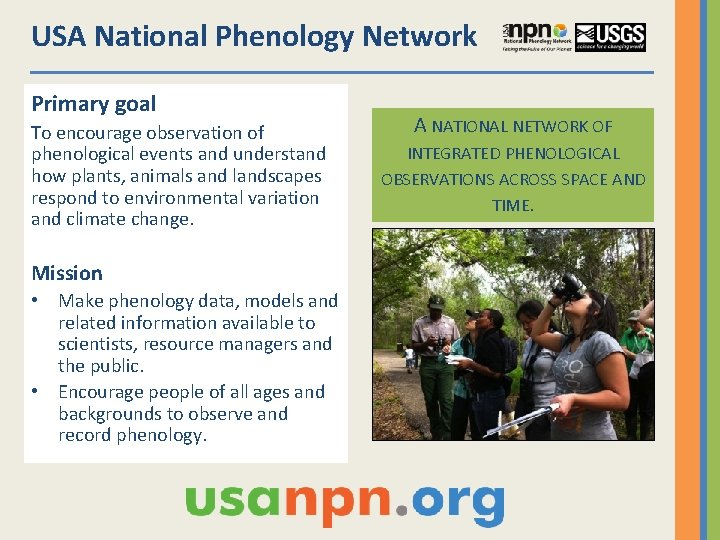 USA National Phenology Network Primary goal To encourage observation of phenological events and understand