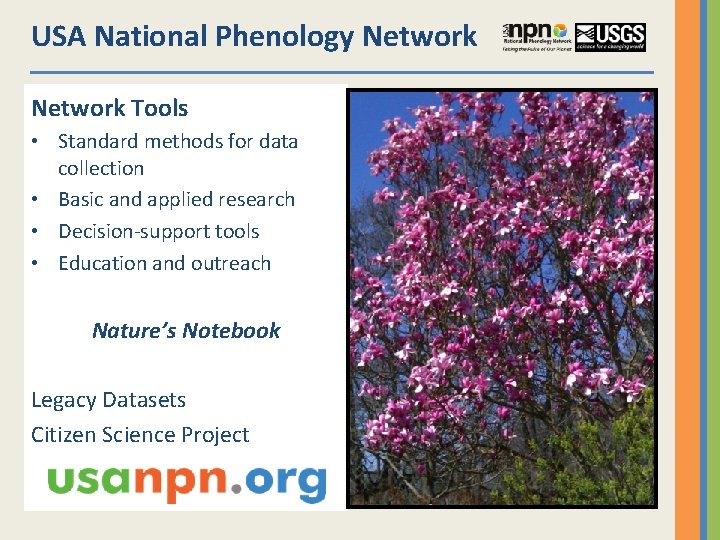 USA National Phenology Network Tools • Standard methods for data collection • Basic and