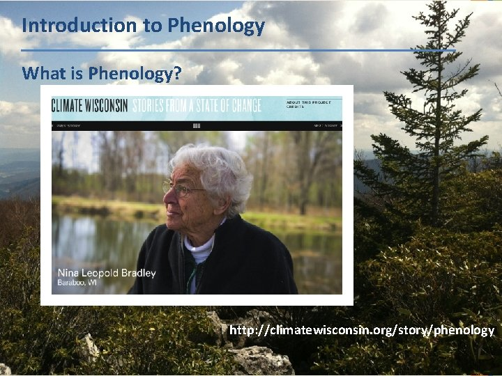 Introduction to Phenology What is Phenology? http: //climatewisconsin. org/story/phenology