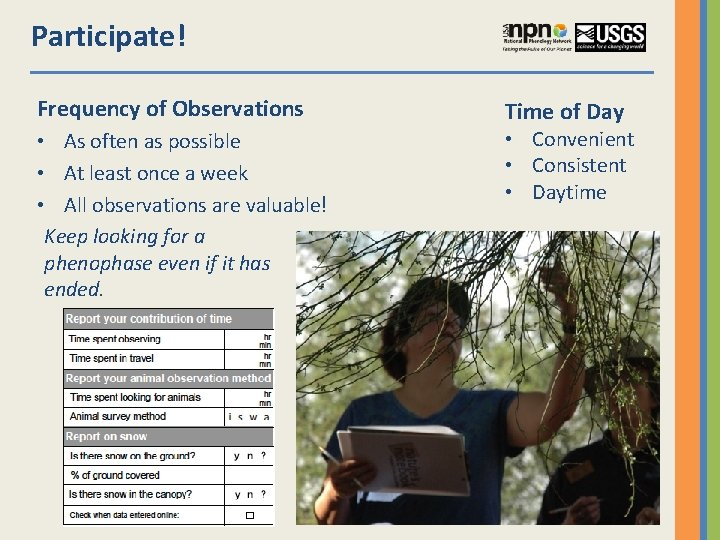 Participate! Frequency of Observations • As often as possible • At least once a