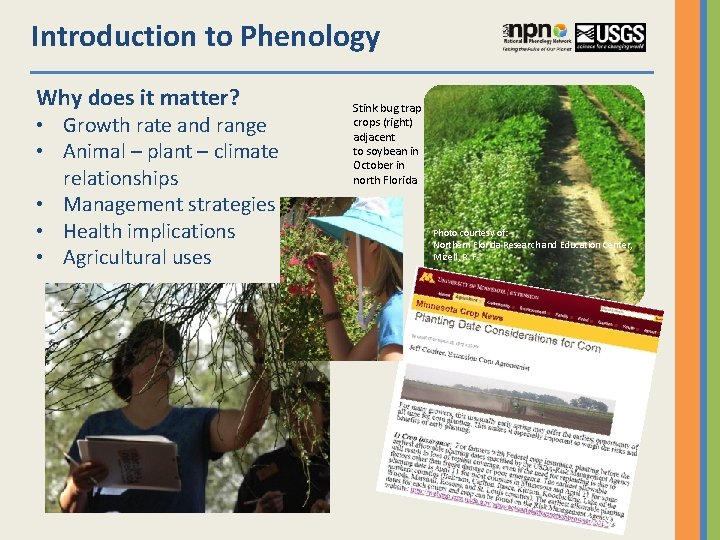 Introduction to Phenology Why does it matter? • Growth rate and range • Animal
