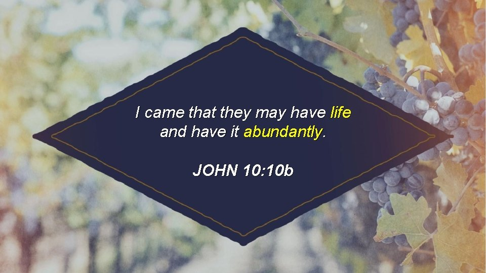 I came that they may have life and have it abundantly. JOHN 10: 10