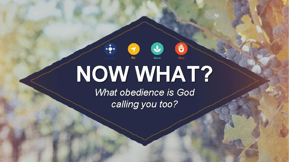 NOW WHAT? What obedience is God calling you too?