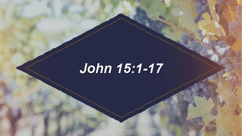 John 15: 1 -17