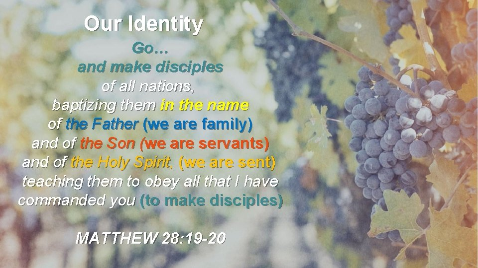 Our Identity Go… and make disciples of all nations, baptizing them in the name