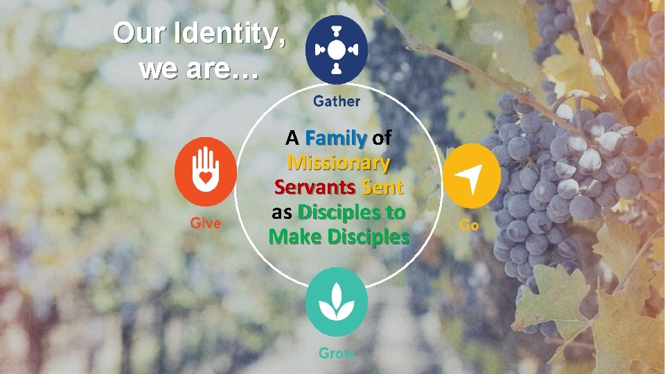 Our Identity, we are… A Family of Missionary Servants Sent as Disciples to Make