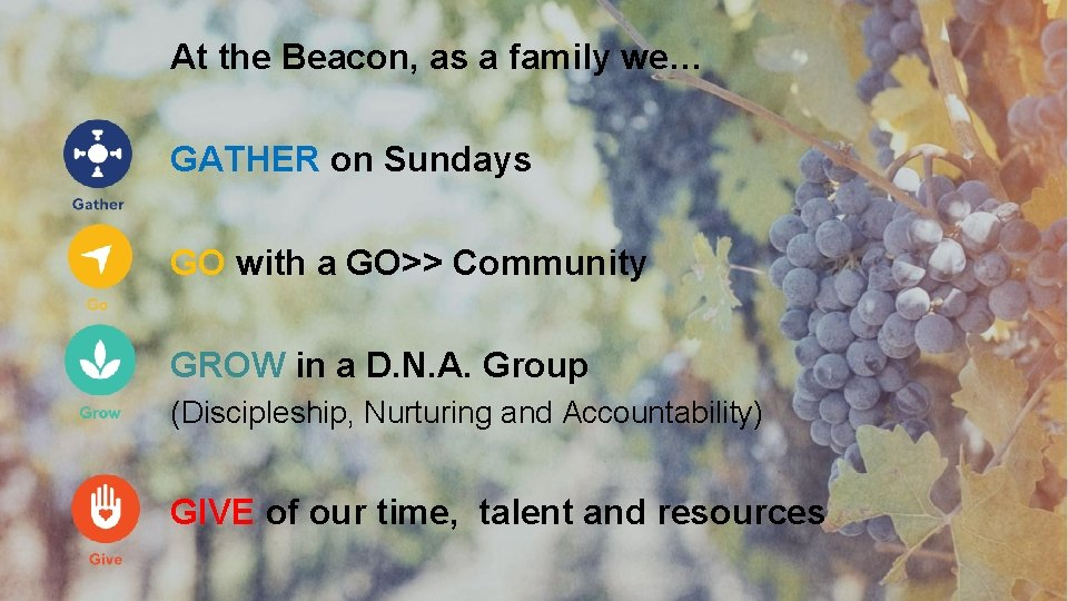At the Beacon, as a family we… GATHER on Sundays GO with a GO>>