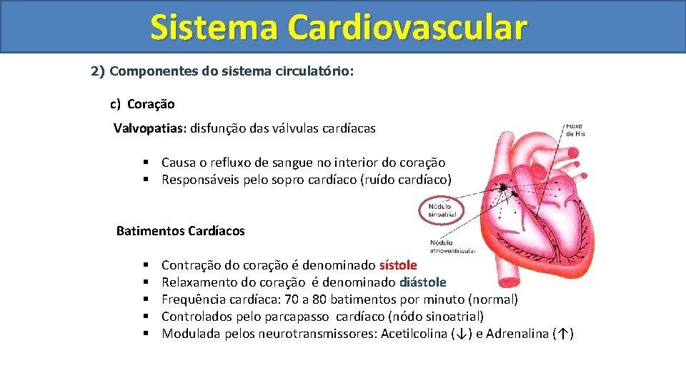 Sistema Cardiovascular Circulatório 2) Componentes do sistema circulatório: c) Coração Valvopatias: disfunção das válvulas