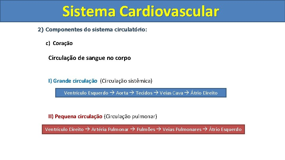 Sistema Cardiovascular Circulatório 2) Componentes do sistema circulatório: c) Coração Circulação de sangue no