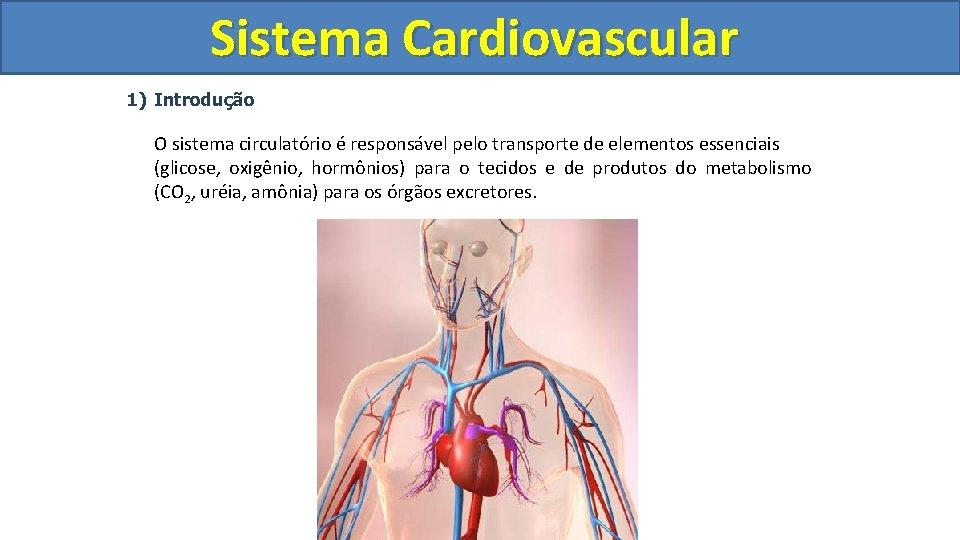 Sistema Cardiovascular Circulatório 1) Introdução O sistema circulatório é responsável pelo transporte de elementos