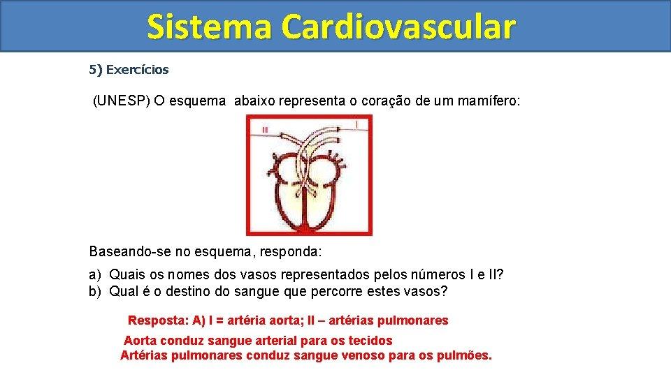 Sistema Cardiovascular Circulatório 5) Exercícios (UNESP) O esquema abaixo representa o coração de um