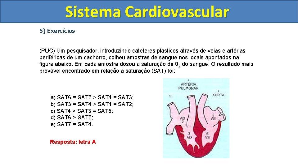 Sistema Cardiovascular Circulatório 5) Exercícios (PUC) Um pesquisador, introduzindo cateteres plásticos através de veias
