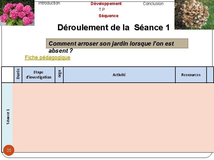 Introduction Développement T. P Séquence Conclusion Déroulement de la Séance 1 Comment arroser son