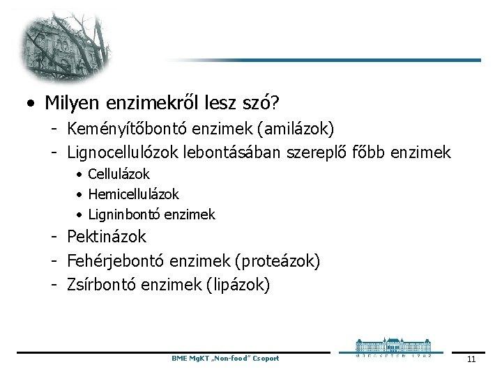 • Milyen enzimekről lesz szó? Keményítőbontó enzimek (amilázok) Lignocellulózok lebontásában szereplő főbb enzimek