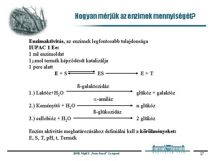 Hogyan mérjük az enzimek mennyiségét? Enzimaktivitás, az enzimek legfontosabb tulajdonsága IUPAC 1 Ee: 1