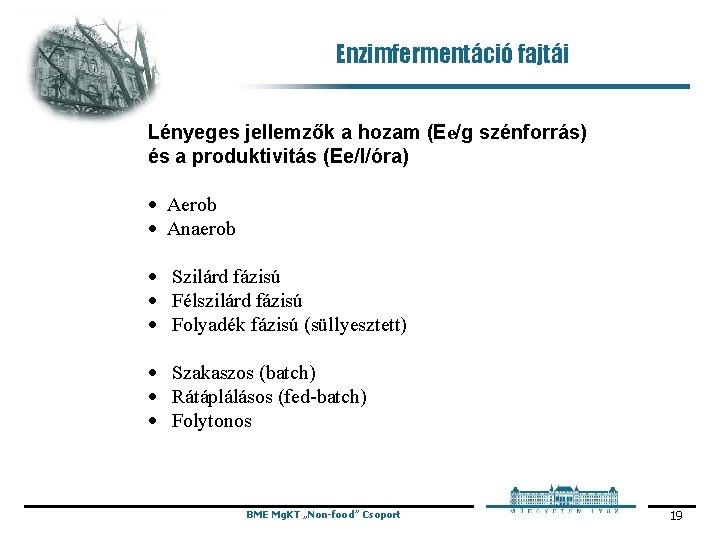 Enzimfermentáció fajtái Lényeges jellemzők a hozam (Ee/g szénforrás) és a produktivitás (Ee/l/óra) · Aerob