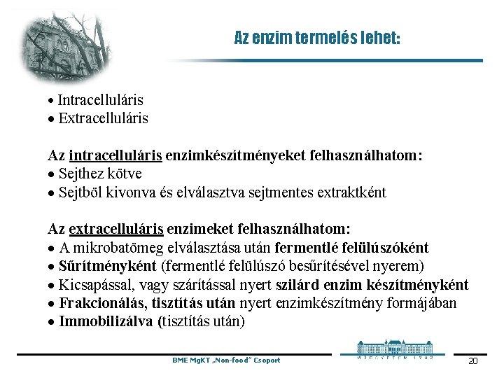 Az enzim termelés lehet: · Intracelluláris · Extracelluláris Az intracelluláris enzimkészítményeket felhasználhatom: · Sejthez