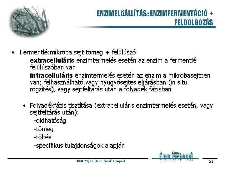 ENZIMELőÁLLÍTÁS: ENZIMFERMENTÁCIÓ + FELDOLGOZÁS • Fermentlé: mikroba sejt tömeg + felülúszó extracelluláris enzimtermelés esetén