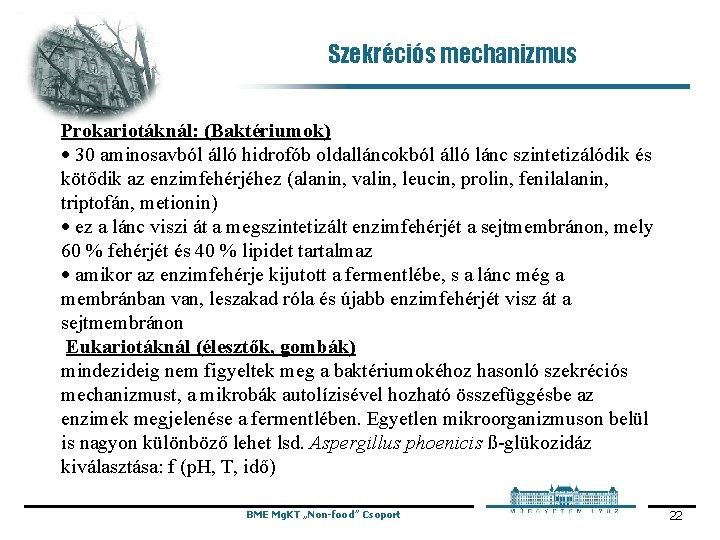 Szekréciós mechanizmus Prokariotáknál: (Baktériumok) · 30 aminosavból álló hidrofób oldalláncokból álló lánc szintetizálódik és