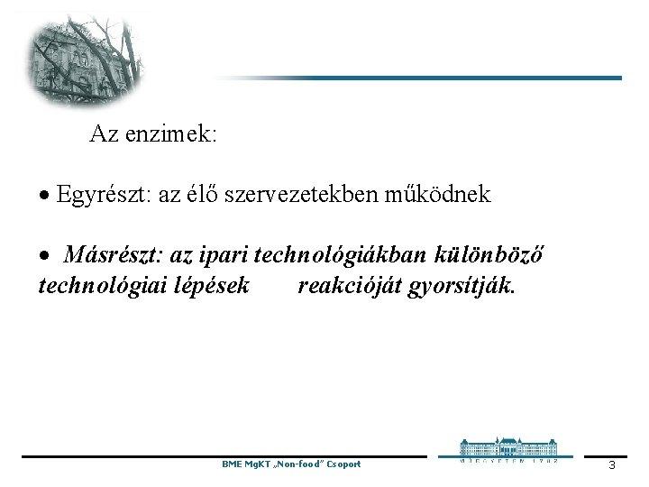 Az enzimek: · Egyrészt: az élő szervezetekben működnek · Másrészt: az ipari technológiákban
