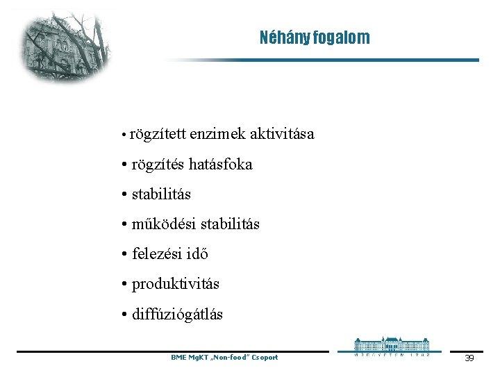 Néhány fogalom • rögzített enzimek aktivitása • rögzítés hatásfoka • stabilitás • működési stabilitás