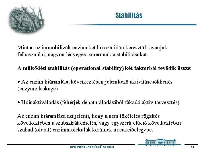 Stabilitás Miután az immobilizált enzimeket hosszú időn keresztül kívánjuk felhasználni, nagyon lényeges ismernünk a