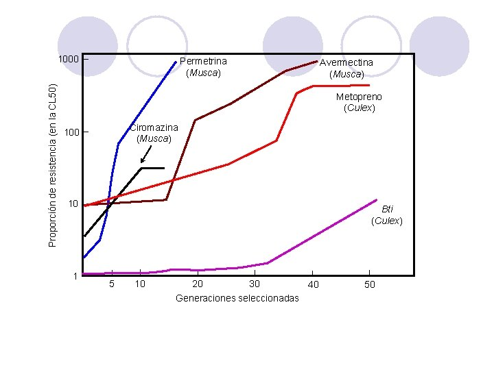 Proporción de resistencia (en la CL 50) 1000 Permetrina (Musca) Avermectina (Musca) Metopreno (Culex)