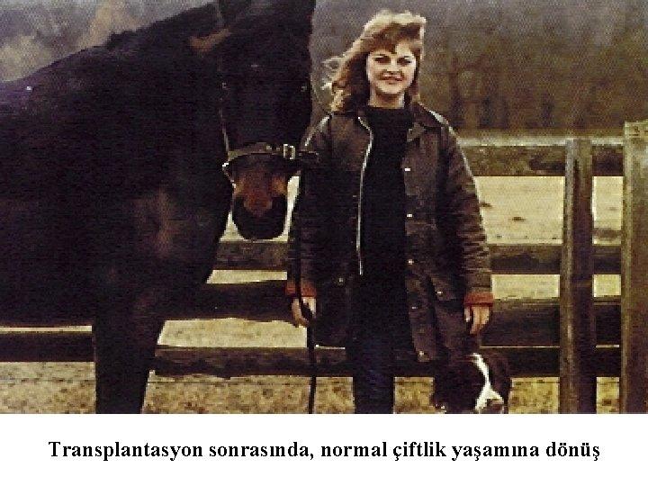 Transplantasyon sonrasında, normal çiftlik yaşamına dönüş
