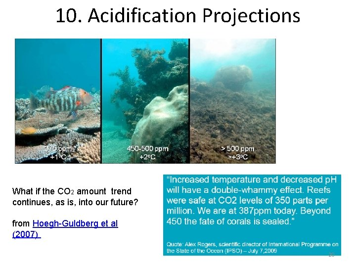 10. Acidification Projections What if the CO 2 amount trend continues, as is, into
