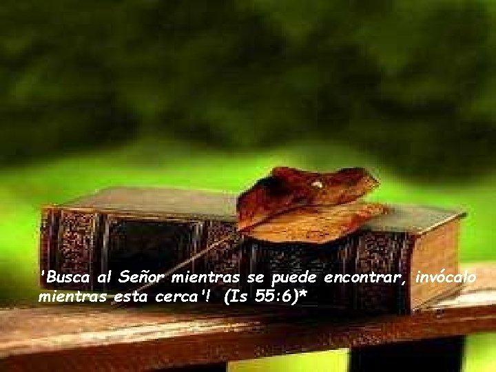 'Busca al Señor mientras se puede encontrar, invócalo mientras esta cerca'! (Is 55: 6)*