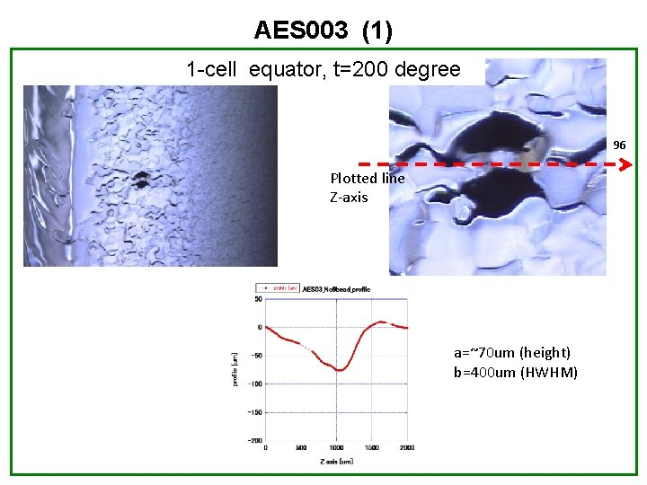 AES 003 (1) 1 -cell equator, t=200 degree 96 Plotted line Z-axis a=~70 um