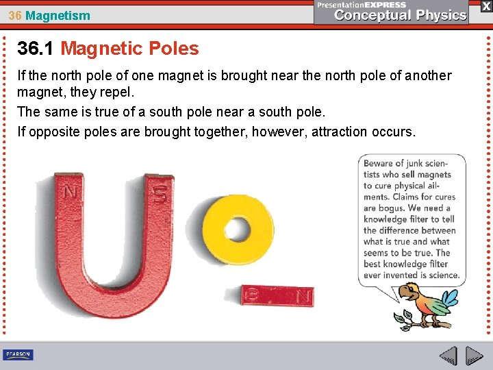 36 Magnetism 36. 1 Magnetic Poles If the north pole of one magnet is