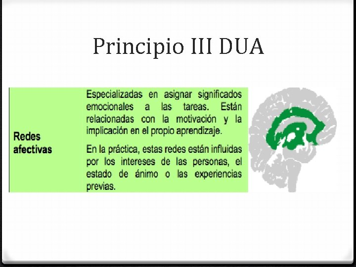 Principio III DUA