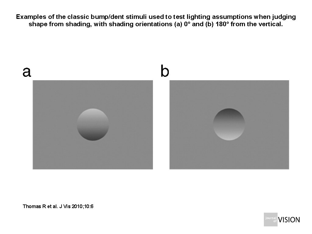 Examples of the classic bump/dent stimuli used to test lighting assumptions when judging shape