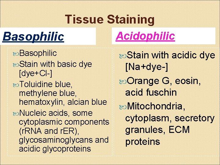 Tissue Staining Basophilic Acidophilic with acidic dye Stain with basic dye [Na+dye-] [dye+Cl-] Orange
