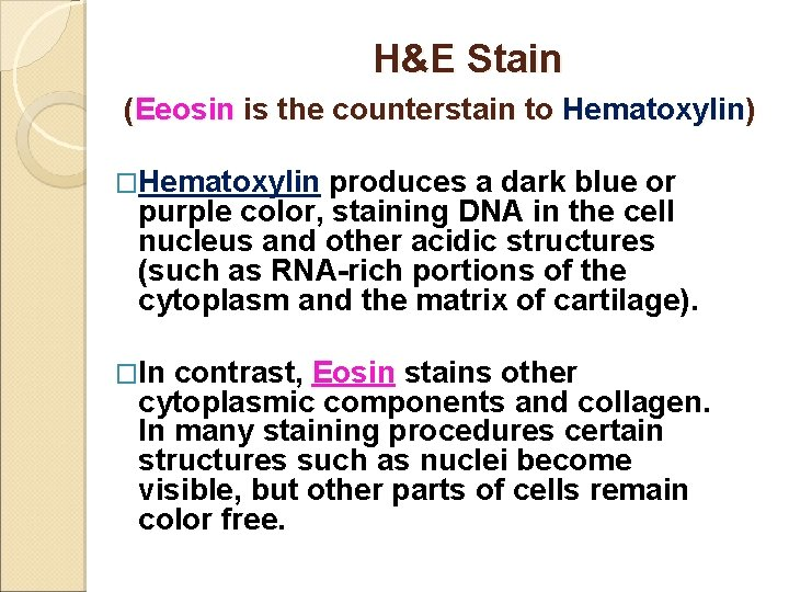 H&E Stain (Eeosin is the counterstain to Hematoxylin) �Hematoxylin produces a dark blue or