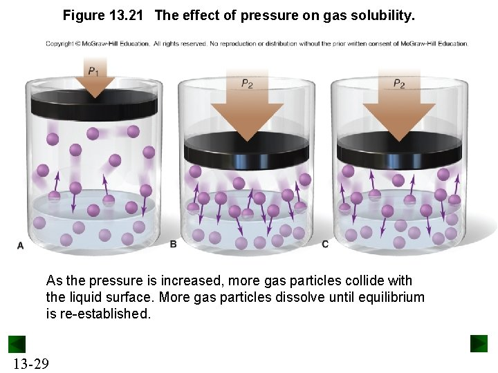 Figure 13. 21 The effect of pressure on gas solubility. As the pressure is