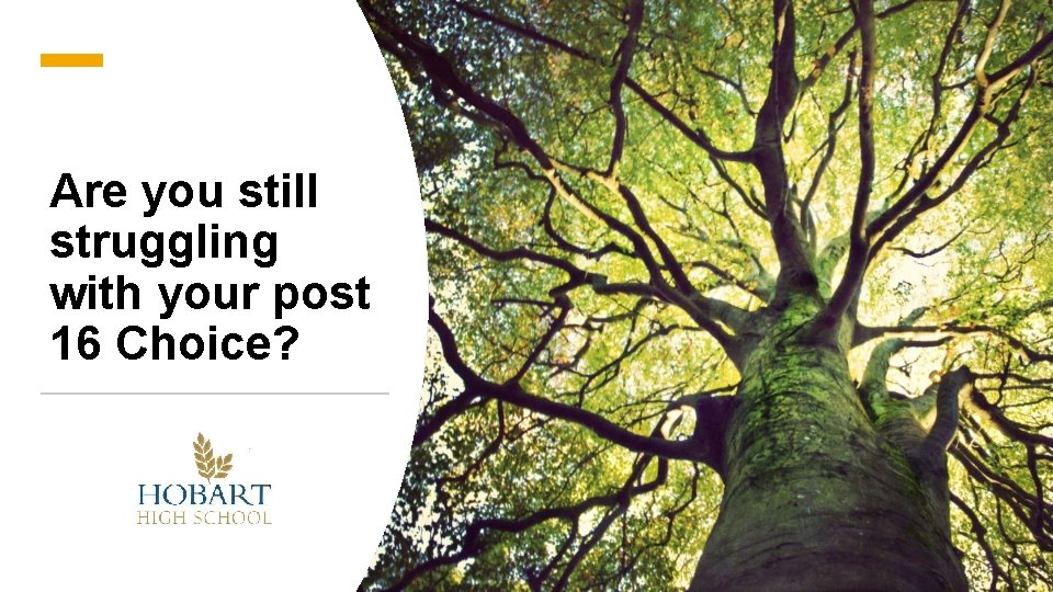 Are you still struggling with your post 16 Choice?